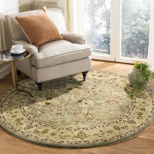 Angus Hand-Hooked Sage/Beige Area Rug by Charlton Home