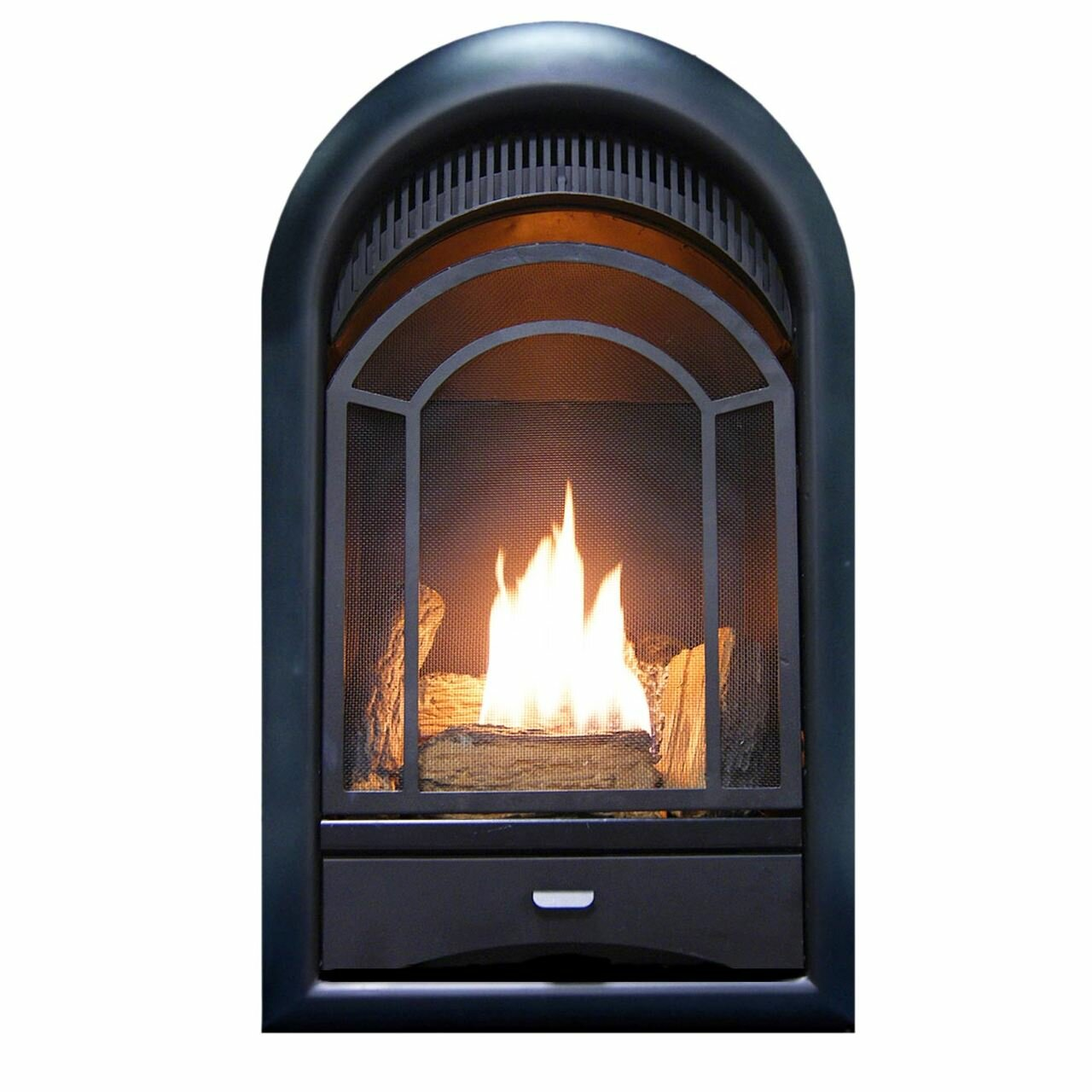 Procom Heating Arched Door Vent Free Propane Natural Gas Fireplace