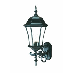 Shopping for Francesca Lane 3-Light Outdoor Sconce By Alcott Hill