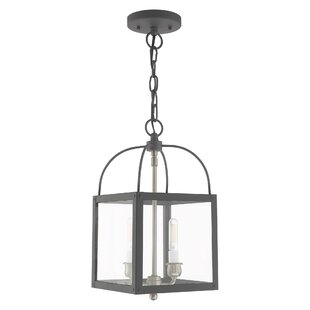 Brundidge 2-Light Lantern Pendant by Alco..