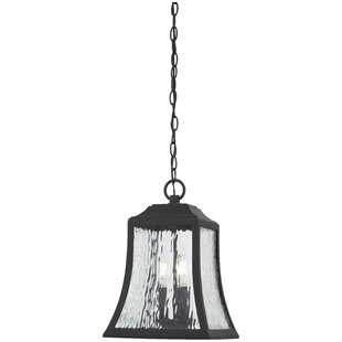 Dunton 3-Light Outdoor Hanging Lantern