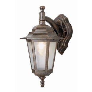 Brookins 1-Light Outdoor Wall Lantern