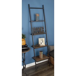 Hoadley Industrial Ladder Bookcase by Williston Forge