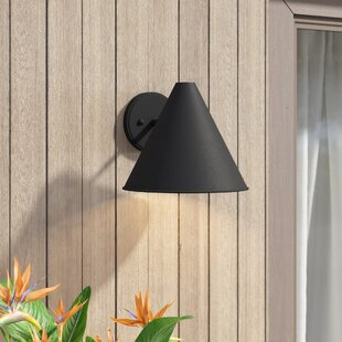 Dedmon Outdoor Wall Lantern