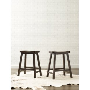 Austin 24 Bar Stool (Set of 2)