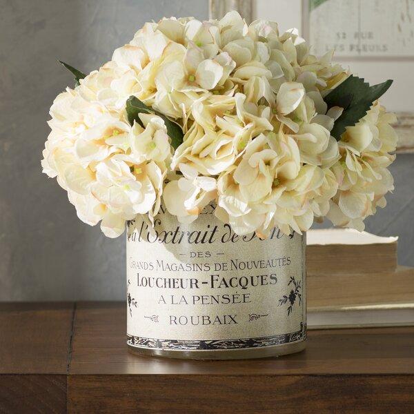 One Allium Way French Label Hydrangea Centerpiece In Pot Reviews Wayfair