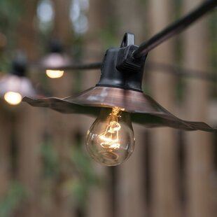 Buy clear 7-Light Globe String Lights By Wintergreen Lighting