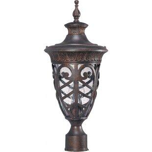 Astoria Grand Dunamoy 1-Light Lantern Head