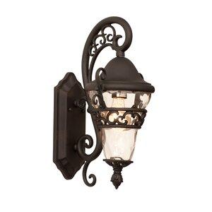 Anastasia 1-Light Outdoor Wall Lantern