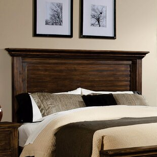 Darby Home Co Desirae Panel Headboard