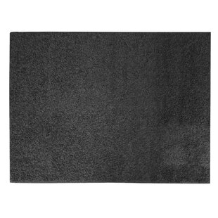 Reviews Sherman Black Shag Area Rug By Winston Porter