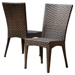 Tanja Patio Dining Chair (Set of 2)