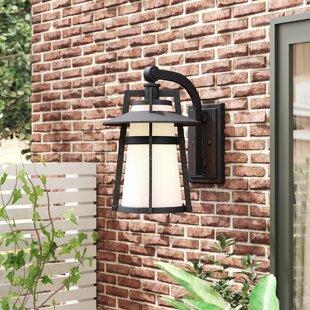Harrower 1-Light Outdoor Wall Lantern by Trent Austin Design