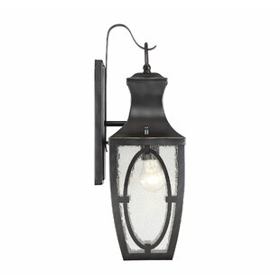 Ramires 1-Light Outdoor Wall Lantern by Darby Home Co