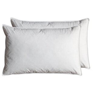 L48 X W74cm Pillow (Set Of 2) By Gallery