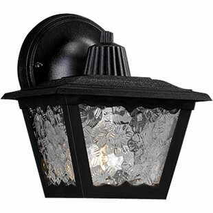 Pitman 1-Light Outdoor Wall Lantern by Darby Home Co