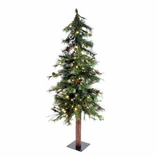 5 mixed country alpine christmas tree with 150 led warm white lights with stand - Colorado Country Christmas