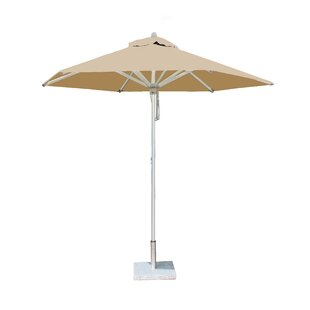 Potter 3m Traditional Parasol By Sol 72 Outdoor