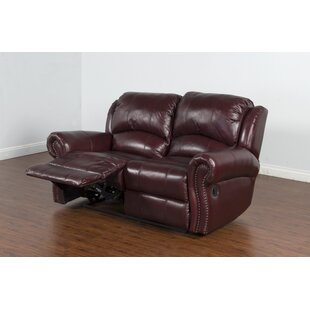 Brazil Dual Reclining Loveseat Darby Home Co