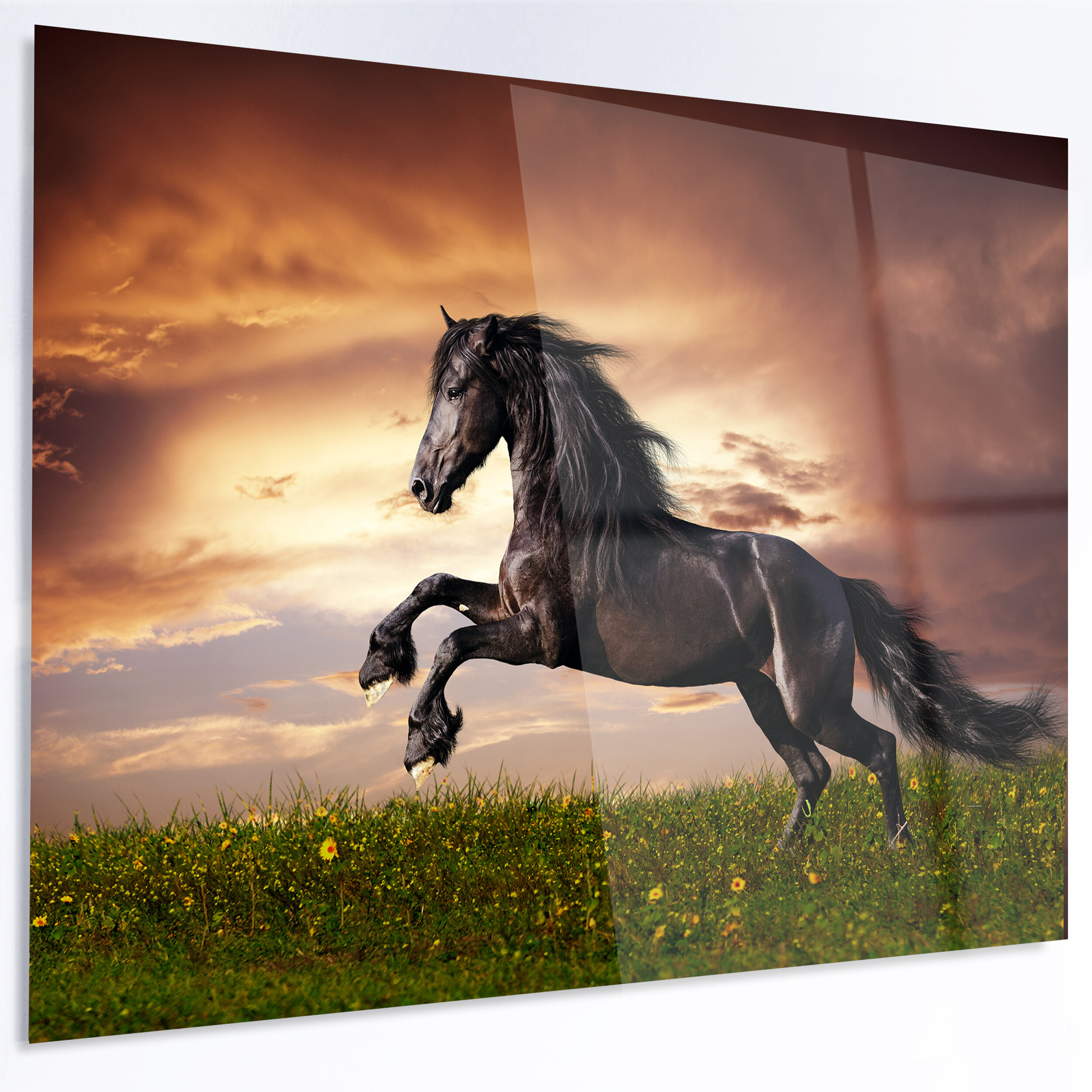 Designart Friesian Horse Gallop Unframed Graphic Art Print On Metal Wayfair