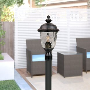 Astoria Grand Doliya Outdoor 1-Light Lantern Head