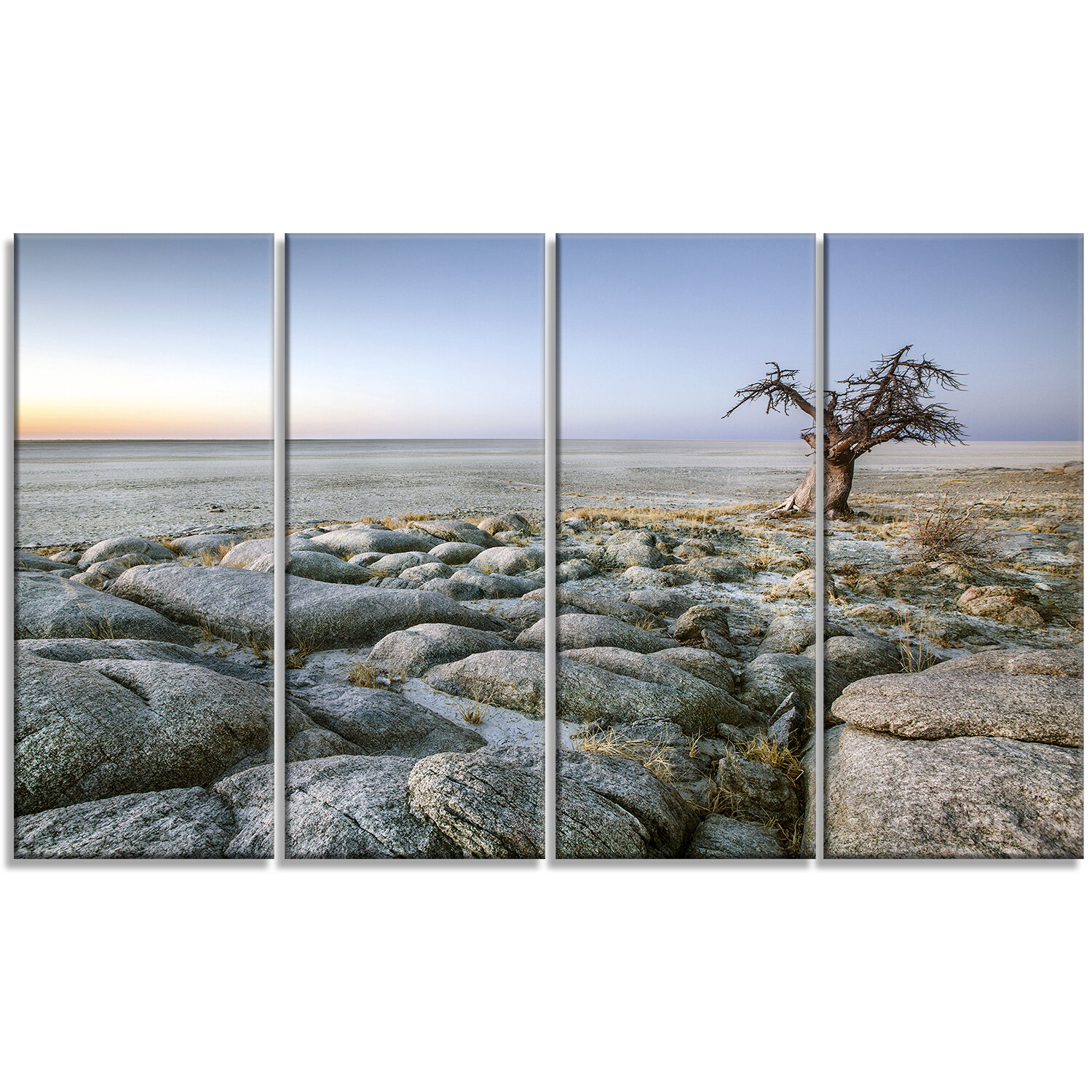 Designart Baobab Tree On Rocky Terrain 4 Piece Photographic Print On Wrapped Canvas Set Wayfair
