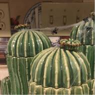 Union Rustic Alvina Cactus 3 Piece Jar Set Reviews Wayfair