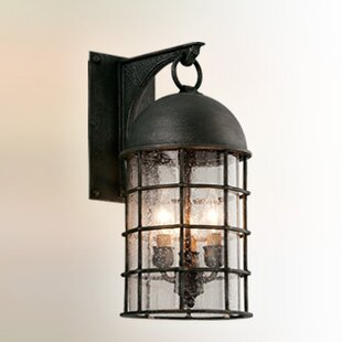 Darby Home Co Sweeney Outdoor Wall Lantern