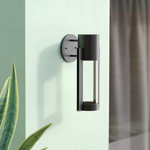 Collin 1-Light Outdoor Sconce