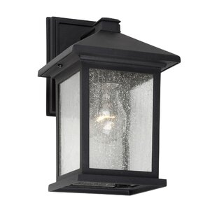 Jarod Outdoor Wall Lantern