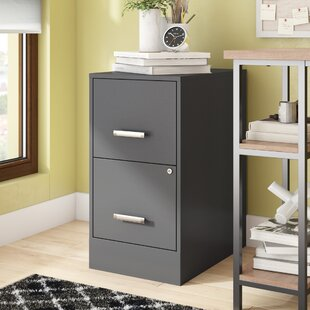 Carson 2 Drawer Vertical File by Ebern Designs Savings