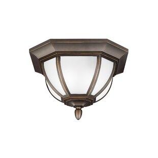 Fleur De Lis Living Teri 2-Light LED Outdoor Flush Mount