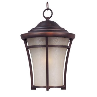 Livingston 1-Light Outdoor Pendant by Darby Home Co Best Choices