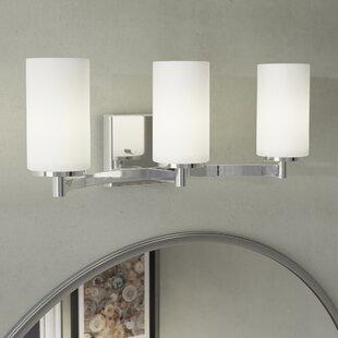 Latitude Run Bessler 3-Light Vanity Light