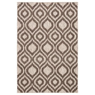 Idra Trellis Ivory/Brown Indoor/Outdoor Area Rug