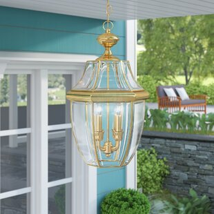 Dashner 3-Light Outdoor Pendant