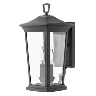 Christien Traditional 2-Light Outdoor Wall Lantern