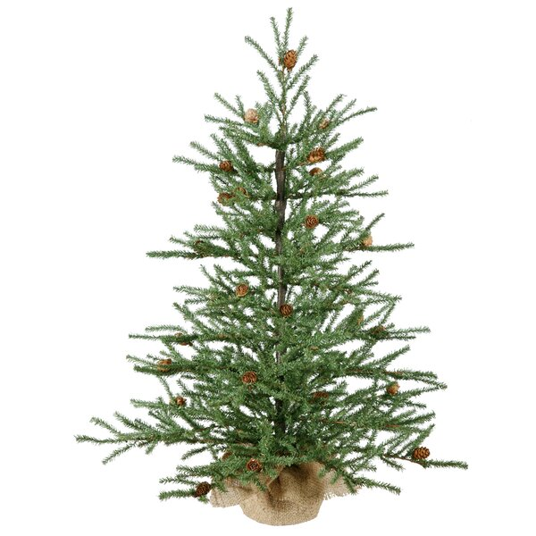 Sparse Christmas Tree Decorating.Potted Christmas Trees You Ll Love In 2019 Wayfair