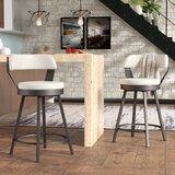 Berrin Bar & Counter Swivel Stool (Set of 2) by Trent Austin Design