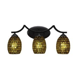 Astoria Grand Pickens 3-Light Vanity Light