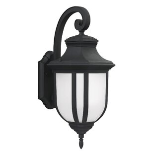 Top Reviews Teri 1-Light Outdoor Wall Lantern By Fleur De Lis Living