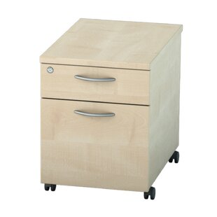 Colette 2-Drawer Filing Cabinet By Zipcode Design