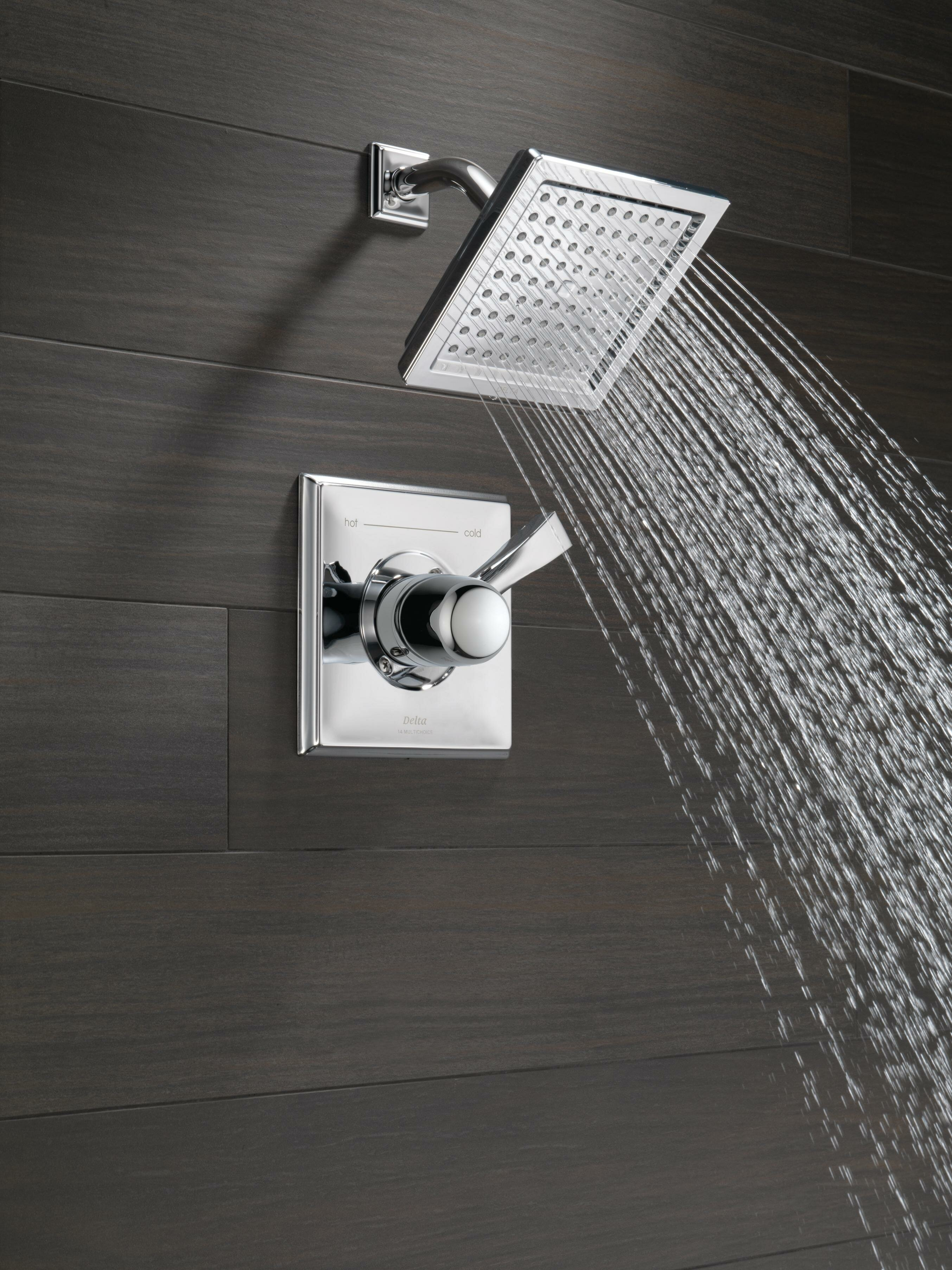 Delta Dryden™ Diverter Shower Faucet with Monitor & Reviews | Wayfair