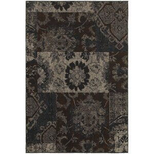 Raiden Charcoal/Brown Area Rug