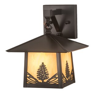 Reviews Wyncote Outdoor Wall Lantern By Loon Peak