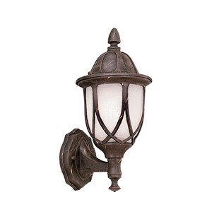 Best Reviews Newburg 1-Light Outdoor Wall lantern By Alcott Hill