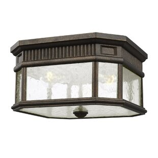 Darby Home Co Chilhowee 2-Light Outdoor Flush Mount