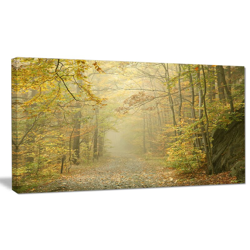 Designart Autumn Forest Path On Misty Morning Photographic Print On Wrapped Canvas Wayfair