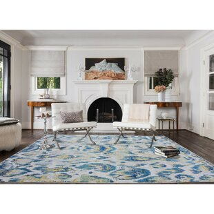 Torain Silver/Cotton Indoor/Outdoor Area Rug
