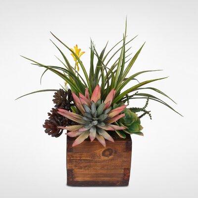 17 Stories Artificial Desktop Agave Pelona with Succulent Variety Arrangement Plant in Planter
